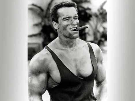 Arnold Bodybuilding Wallpapers Free Wallpaper