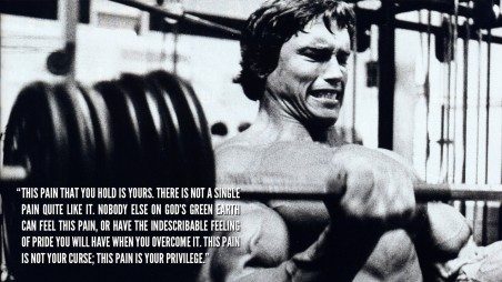 Arnold Schwarzenegger Quote Quote Hd Wallpaper Quotes