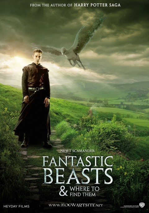 Fantastic Beasts And Where To Find Them Fan Poster By Hogwartsite Nogih The Tales Of Beedle The Bard