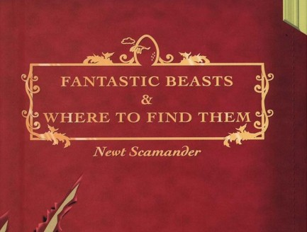 Rowling Fantastic Beasts And Where To Find Them Will Get Video Game Version