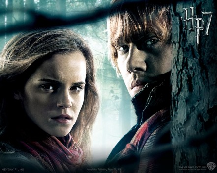 Harry Potter The Deat Hallows Part Ii Movie Movie