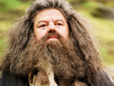 Rubeus Hagrid Wallpaper Hogwarts Professors Kurt Russell As Han Solo Our Favorite Movies Would Have Been So Different If