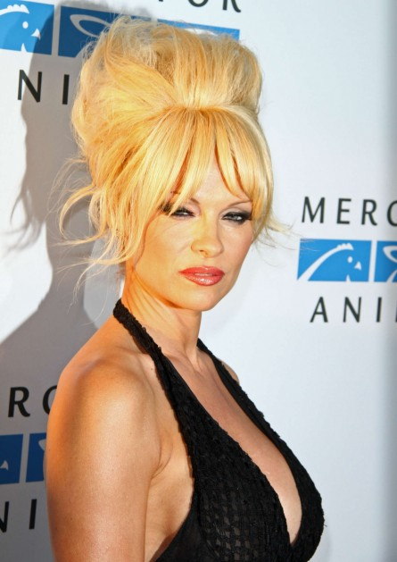 Pamela Anderson Mercy For Animals Gala